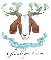 Glanllyn Farm
